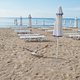 Seagull takes off at Sunny Beach on Black Sea in Bulgaria. Summer vacation travel holiday. Sunbeds. - PhotoDune Item for Sale