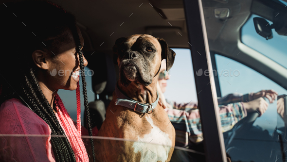 Multiracial people having fun driving car with pet dog in summer vacation - Friends in camper van - Stock Photo - Images