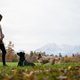 Young woman standing in green meadow training her two dogs - PhotoDune Item for Sale