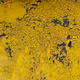Yellow cracked paint  texture background - PhotoDune Item for Sale