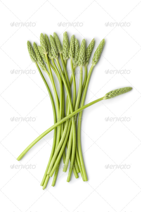 Wild green asparagus - Stock Photo - Images