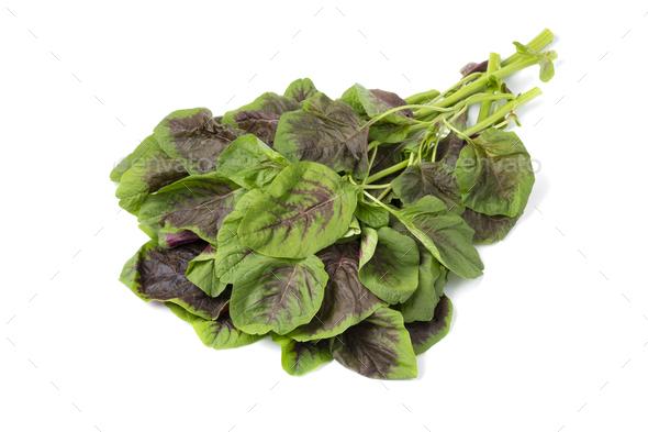 Fresh raw edible amaranth leaves on white background - Stock Photo - Images