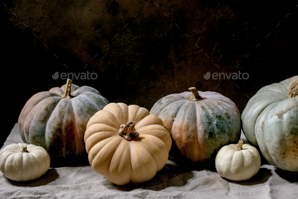 Colorful pumpkins collection on linen tablecloth. Dark still life - Stock Photo - Images