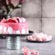 Festive Pink Cake - PhotoDune Item for Sale