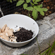 Crushed egg shell and spent coffee grounds in bowl against plants. Natural organic fertilizers for - PhotoDune Item for Sale