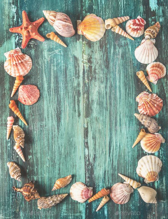 Seashells frame - Stock Photo - Images