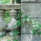 old gray balustrade with stone columns and railing - PhotoDune Item for Sale