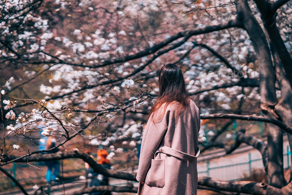 A young beautiful girl under blossom magnolia tree - Stock Photo - Images