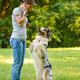 Woman teaching adorable smart dog Australian Shepherd new commands during obedience training - PhotoDune Item for Sale