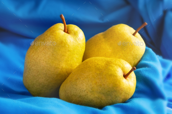 Three yellow ripe juicy pears on blue background - Stock Photo - Images