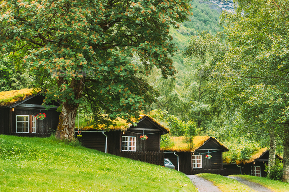Traditional Norwegian Old Wooden Houses With Growing Grass On Roof. Cabins In Norway - Stock Photo - Images