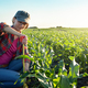 Middle age female caucasian maize farmer with tape measure kneeled for inspection corn stalks - PhotoDune Item for Sale