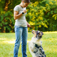 Woman teaching adorable smart dog Australian Shepherd new commands during obedience training in - PhotoDune Item for Sale