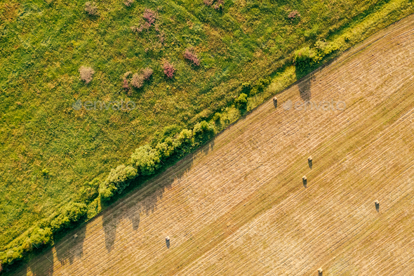 baled hay in field Agriculture Copyspace Top down view - Stock Photo - Images
