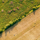 baled hay in field Agriculture Copyspace Top down view - PhotoDune Item for Sale