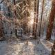 Beautiful winter sunrise - PhotoDune Item for Sale