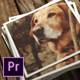 Instant Photo Stack | MOGRT for Premiere Pro - VideoHive Item for Sale