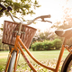 Classic Bicycle at sunset in the park or deep forest - PhotoDune Item for Sale