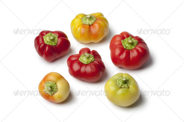 Alma paprika peppers - Stock Photo - Images