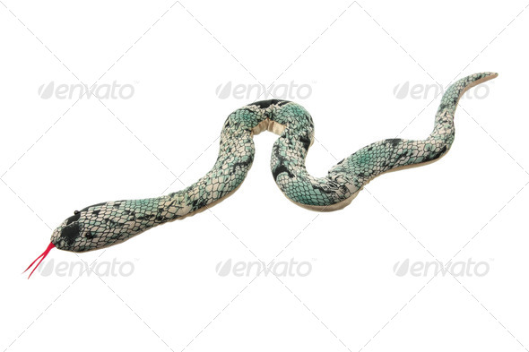 Toy Snake - Stock Photo - Images