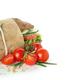Tasty ciabatta sandwich isolated on white background - PhotoDune Item for Sale