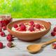 Fresh breakfast - oatmeal with raspberries - PhotoDune Item for Sale