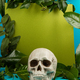 Blue and green background with green fresh leaves and plants and a scull. - PhotoDune Item for Sale