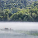 dreamy river scene in summer morning - PhotoDune Item for Sale