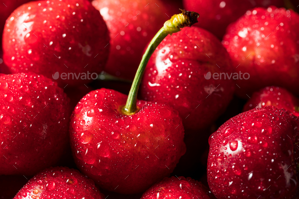 Healthy Organic Red Cherries - Stock Photo - Images