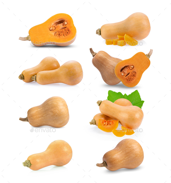 set of butternut squash isolated on white - Stock Photo - Images