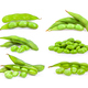 green soy beans isolated on white - PhotoDune Item for Sale