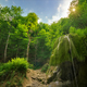 Waterfall in deep forest. - PhotoDune Item for Sale