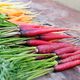 Organic purple carrots from the garden - PhotoDune Item for Sale