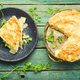 Homemade pie with cheese and cottage cheese - PhotoDune Item for Sale