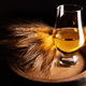 A glass of whiskey on oak barrel - PhotoDune Item for Sale