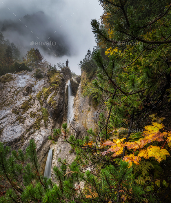 Foggy autumn day - Stock Photo - Images