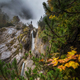 Foggy autumn day - PhotoDune Item for Sale
