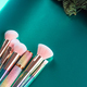 Trendy make up pink brushes on green metallic background with christmas winter fir branches - PhotoDune Item for Sale