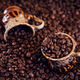 Coffee cup full of roasted coffee beans. - PhotoDune Item for Sale