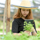 A woman in a hat holding a tablet taking pictures of vegetables in hand in the organic garden. - PhotoDune Item for Sale