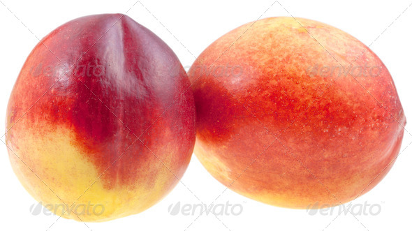 two fresh Nectarines - Stock Photo - Images