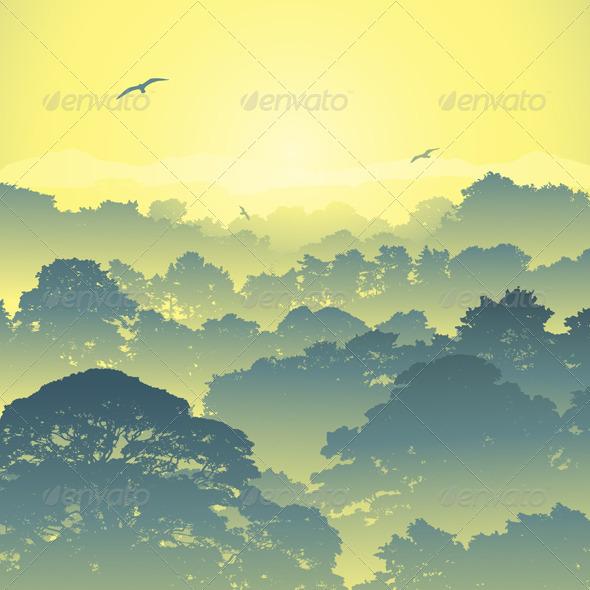 Forest Landscape - Landscapes Nature
