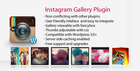 Instagram Gallery - Wordpress Plugin - CodeCanyon Item for Sale
