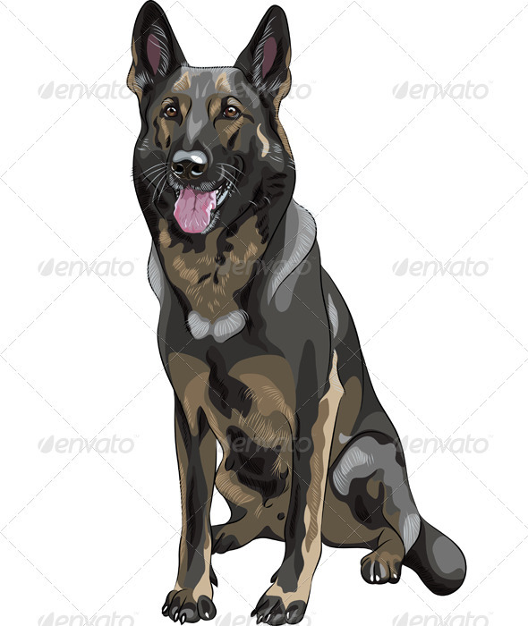 Vector Black Dog German Shepherd Breed - Animals Characters