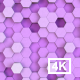 Hexagonal Background - VideoHive Item for Sale