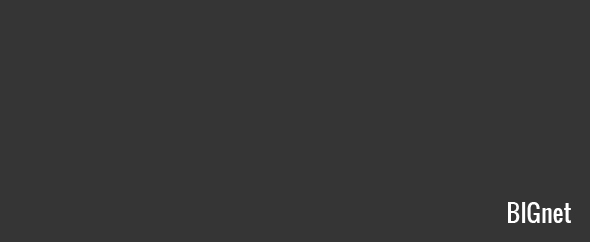 Bignet profile image