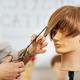 Haircutting Education - Hairstylist Explaining Haircutting Techniques - PhotoDune Item for Sale