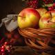 apples and viburnum - PhotoDune Item for Sale
