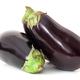 Eggplants on white background - PhotoDune Item for Sale