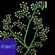 Watercolor floral elements Vol.3 - VideoHive Item for Sale